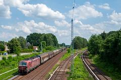 22-6-2019 - Bergfelde (berlinger) Tags: eisenbahn railways railroad bergfelde berlin aussenring txl vectron 193555 freighttrain güterzug offroad werbelok