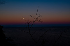 Lluna plena (faltimiras) Tags: madeira portugal trekking hiking funchal ultratrail ruivo porto moniz coast costa ocean cliff nature travel travesia