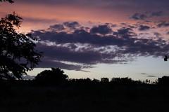 Beautiful Skies (Anna Gurule) Tags: skies nmskies eveningclouds evening artedgy annagurule annaortizgurule colorful newmexico