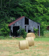 Old Barn and Hay Bales - Boxley Valley, Northwest Arkansas (danjdavis) Tags: barn arkansas haybales oldbarn buffalonationalriver boxleyvalley