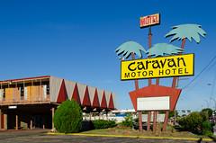 Caravan Motor Hotel (dangr.dave) Tags: arlington tx texas downtown historic architectyure neon neonsign caravanmotorhotel caravanmotel palmtree tarrantcounty