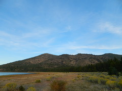 Eagle Lake Edge (totalescape.com) Tags: lake edge shoreline shore waterfowl birds deer mountains forest california lakes sunset calm autumn