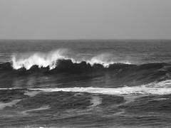 Sopla un poco de viento... (Andres Bertens) Tags: 8788 olympusem10markii olympusomdem10markii olympusm75300mmf4867ii olympusmzuikodigitaled75300mmf4867ii rawtherapee blackandwhite bw seascape sea