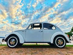 Worldwide VW Beetle Day (aleyaluk) Tags: beetle escarabajo fusca vocho beetleday vw volkswagen diadelescarabajo vwbeetle vwescarabajo vwfusca