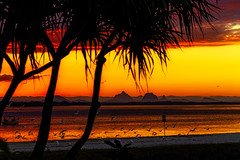 golden hour - from kakadu reserve #3 (Fat Burns ☮) Tags: sunset goldenhour sea mountains birds ocean banksiabeach kakadureserve bribieisland queensland australia nikond850 nikon2401200mmf40