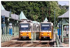 Tram Budapest - 2019-35 (olherfoto) Tags: tram tramcar tramway villamos strasenbahn budapest ungarn hungary bkv tatra t5c5