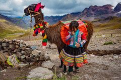 La Niña y el Llama (Luis Sousa Lobo) Tags: 738a18863 llama peru girl peruvian cusco andes lama mountain traditional canon 1740 5d mark iv