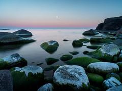 Evening at the High coast (Fjällkantsbon) Tags: kallviken ångermanland sverige högakusten evamårtensson bönhamn biofoto angermanland hogakusten nordingrå västernorrlandslän fullmoon seascape moon