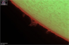 Solar Prominences - June 22, 2019 (The Dark Side Observatory) Tags: tomwildoner solar sun space outerspace skywatcher telescope 120ed celestron cgemdx asi290mc zwo astronomy astronomer science weatherly pennsylvania observatory darksideobservatory star tdsobservatory earthskyscience daystar quark chromosphere prominence sunspot june 2019