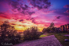 Colorful Sunset, Rees-Germany (Stathis Iordanidis) Tags: sunset sundown colorful rees germany niederrhein rhine river promenade travel afternoon