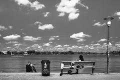 An der Alster (Deinert-Photography) Tags: streetfotografie deutschland street schwarzweis schwarzweiss fujifilm23mmf14 fujifilmxt3 blackwhite hamburg citylife fuji streetart streetphoto streetphotography ubanphotography urban xt3