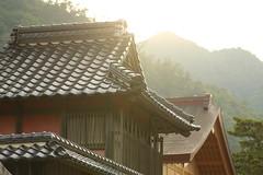 Izumo Taisha Shrine (Teruhide Tomori) Tags: 出雲大社 神社 島根 木造建築 寺社建築 shrine japan japon tradition shimane izumo construction architecture izumotaishashrine 日本 出雲 morning
