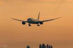 Etihad Airways (ab-planepictures) Tags: etihad airways boeing 787 dreamliner bru ebbr brüssel flugzeug flughafen airpirt aviation aircraft plane planespotting