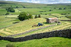 Making hay in Wensleydale, North Yorkshire (Bob Radlinski) Tags: england europe greatbritain northyorkshire richmondshire uk wensleydale yorkshiredales yorkshiredalesnationalpark travel em1d6329