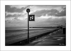 The Lang Scots Mile - (Industar 50-2, 50mm, f8) - 2019-05-07th (colin.mair) Tags: 50mm ayr bw black industar502 lens m42 manual post russian ussr white border f8 frame marker mile monochrome promenade wall