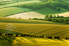 Solstice (S l a w e k) Tags: southdowns brighton sussex england uk summer landscape countryside