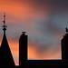 Möwen-Farbe-Wolkenspiel