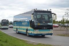 TX15 DAF: Ingleby, York (originally YJ15 ETZ) (chucklebuster) Tags: tx15daf yj15etz inglebys york pullman edinburgh coach lines van hool alicron tx15