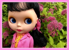BaD Pink June 23, 2019 (Foxy Belle) Tags: doll blythe day june 23 2019 pink goldie bl all over gold boggled matte chilly chums flower skipper garden bud soll spirea bloom