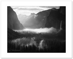 Misty mornings (Horia Bogdan) Tags: yosemite yosemitevalley tunnelview california black white anseladams mist bridalveil waterfall elcapitan halfdome horiabogdan