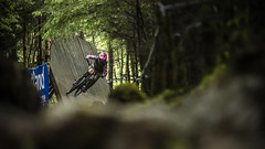 th (phunkt.com™) Tags: uci fort william dh downhill down hill mountain bike world cup 2019 scotland race phunkt phunktcom wwwphunktcom keith valentine photos