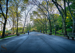 1 Wednesday Walk Riverside park west-6 (Singing With Light) Tags: 2019 31st a7iii mirrorless ny nyc singingwithlight sonya7iii westside may morning nature onthewaytowork photography riversidepark singingwithlightphotography sony