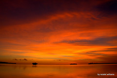 Sunset Orange tone by iezalel williams - Isle of Pines in New Caledonia - IMG_4527 - Canon EOS 700D (iezalel7williams) Tags: sunset orange tone photo planetearth clouds cloudy nature canoneos700d natural sea seawater sky seascape silhouette dramatic reflection rock islet travel thankyou high vibration peaceful zenitude
