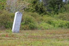 Mount Carmel Cemetery - 22 (KellyMercer) Tags: cemetery kellymercer kellymercerhalifax novascotia graveyard