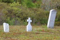 Mount Carmel Cemetery - 20 (KellyMercer) Tags: cemetery kellymercer kellymercerhalifax novascotia graveyard