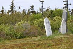 Mount Carmel Cemetery - 16 (KellyMercer) Tags: cemetery kellymercer kellymercerhalifax novascotia graveyard