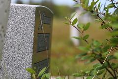 Mount Carmel Cemetery - 17 (KellyMercer) Tags: cemetery kellymercer kellymercerhalifax novascotia graveyard