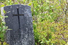 Mount Carmel Cemetery - 12 (KellyMercer) Tags: cemetery kellymercer kellymercerhalifax novascotia graveyard