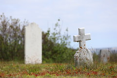 Mount Carmel Cemetery - 10 (KellyMercer) Tags: cemetery kellymercer kellymercerhalifax novascotia graveyard