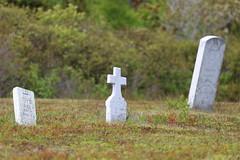 Mount Carmel Cemetery - 21 (KellyMercer) Tags: cemetery kellymercer kellymercerhalifax novascotia graveyard