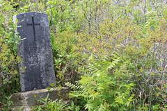 Mount Carmel Cemetery - 13 (KellyMercer) Tags: cemetery kellymercer kellymercerhalifax novascotia graveyard