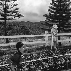 Are we slaves to our smart phone? (Andy @ Pang Ket Vui ( shootx2 )) Tags: borneo fujifilm x100f nature tourist desa farm kundasan flower malaysia sabah travel black white photography