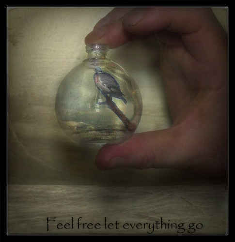Feel free let everything go