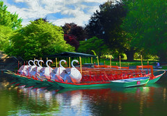 Swan Boats Early in the Morning (WilliamND4) Tags: sliderssunday hss park swan boats bostonpublicgarden boston painterly
