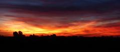P1110678 (kchocachorro) Tags: landscape sunset sun sunshine atardecer campo colours nature naturephotography naturephotographer