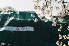 Thank you, Heisei (しまむー) Tags: pentax mz3 fa 43mm f19 limited kodak gold 200 弘前城 桜祭り