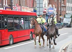 Metropolitan Police Service - Mounted (Waterford_Man) Tags: mounted workinghorses mps metropolitanpoliceservice lewisham se13 london