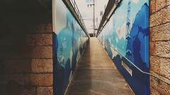 Flow (buntbein) Tags: basel station 2019 streetart street art blue urban summer