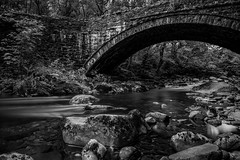 Afon Eden bridge ii (Niaic) Tags: afoneden river riverbank wales forest park countryside rural woods trees snowdonia landscape blackandwhite monochrome zeissloxia2821 sony a7ii bridge crossing route nd longexposure stream flow flowing movement water ndfilter coedybrenin