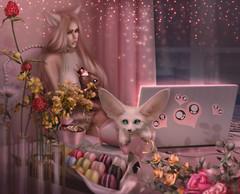 🐾 Little kitty so upset :( 💫💥🐱🎀🐈🐾️😻 (Exobiology_SL CLUBs) Tags: fantasygachacarnival culprit go catwa theskinnery wow lol animal 変態 ヘンタイ エッチ cherrybullet 핑크판타지 pinkfantasy ピンクファンタジー 유빈 yubeen ユビン japan ユビコ 내딸 kittengirl kittenplay catgirl kink sparkle wednesday catears greeneyes dmv dmvmodel selfie happy outofcosplay cosplaygirl cosplayer animememes hentaigirl loli lolicon warm ecchi ecchihentai hentaimemes anime funtimefoxy school uniform schooluniform schoolgirl schoolmiss schoolgirluniform pink black pinkblack petite dreams summer cawaii axesfemme like picoftheday disney kawaiishareme kawaiigirl tokyoghouledit princesadisney harajukugirls shibuyacrossing bodylinetokyo cute love smile victorianstyle
