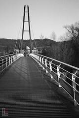 Long Bridge (fs999) Tags: fs999 fschneider aficionados agfa optima 1535 sensor agfaoptima paratronic solitar 12840 35mm film 24x36 camera 135 filmcamera ashotadayorso topqualityimage topqualityimageonly artcafe pentaxart corel paintshoppro 2019ultimate paintshoppro2019ultimate walferdange luxembourg luxemburg lëtzebuerg ilford pan 400 pan400 400iso blackwhite blackandwhite bw noirblanc noiretblanc nb blackwhitephotos caffenol clcs cold start stand home development plustek opticfilm 120 scanner 2400dpi silverfast ai studio