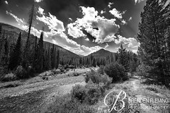 Yellowstone National Park 1 b&w (MrDiscoDucks) Tags: brenden fleming brendenfleming nikon d810 nikond810 summer 2018 hiking hike adventure expolore wyoming mrdiscoducks outdoors outdoor outside travel traveling landscape landscapes photo photography photographer nature black white bw yellowstone national park water river creek paths
