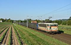 SNCF BB25673, Hochfelden, 17-6-2019 19:52 (Derquinho) Tags: sncf bb25673 bb25500 bb 25673 25500 danseuse alsace elzas elsass hochfelden rrr rio ter 830140 strasbourg saverne