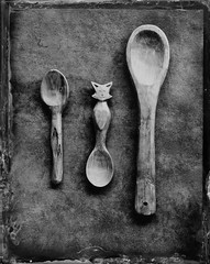 (cedricmarino) Tags: collodion wet plate 4x5 large format alternative process spoon