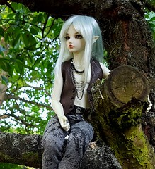 (claudine6677) Tags: bjd msd ball jointed doll asian dolls mnf minifee karsh fairyland