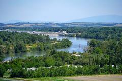 France:Avignon:Southern Rhône 隆河 (Enemy8028) Tags: france avignon lerhône 隆河 法南 法國 southernrhônevalley châteauneufdupape 教皇新堡 cotesdurhone vineyard